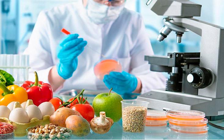I+D+I en la industria alimentaria