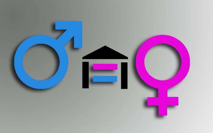 Políticas de género e igualdad a nivel local. Elaboración de planes de igualdad en el ámbito municipal