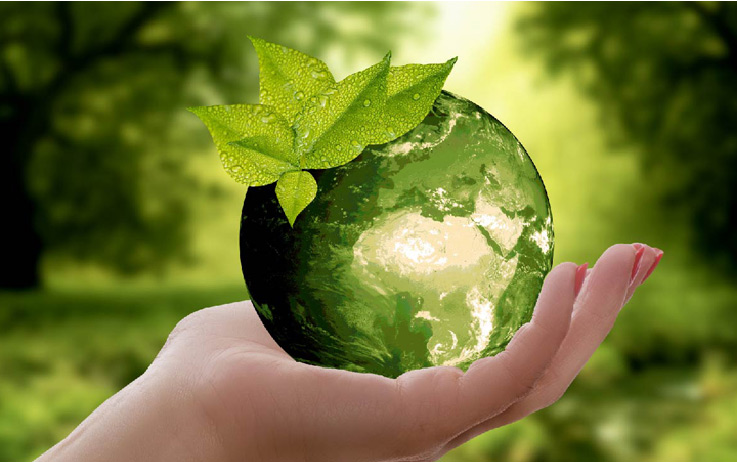 Ejecución de programas y actividades de educación ambiental