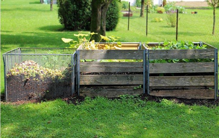 Sensibilización ambiental: orientación para el compostaje doméstico