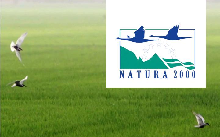 Red Natura 2000: cuidado y vigilancia desde la administración local (en espacios marítimos y terrestres)