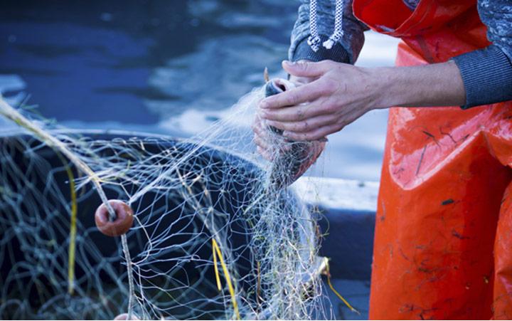 Oportunidades para el crecimiento marino y marítimo sostenible
