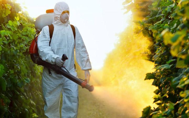 Medidas de control de organismos nocivos