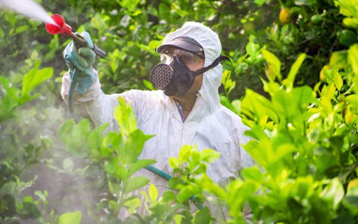 Riesgos físicos, químicos y biológicos asociados al lugar de aplicación del servicio de control de organismos nocivos