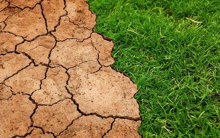 Adaptación al cambio climático